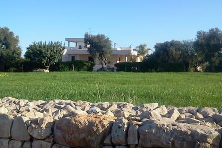 BeB Con 3 Camere indipendenti con giardino - Speziale