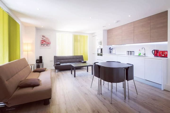 Lovely bright apartment in centremost London
