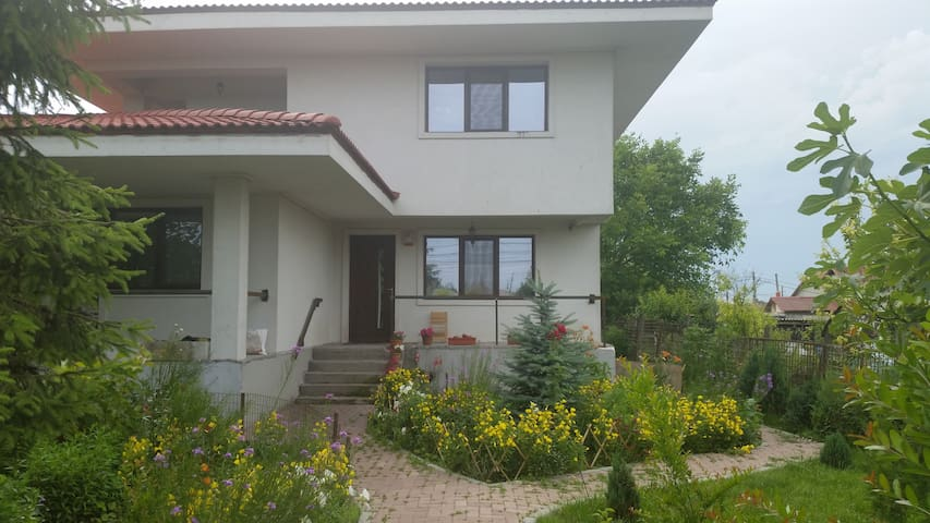Cozy apartment in Agigea - Agigea - Huoneisto