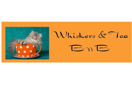 Whiskers & Tea BnB:     Comfy room for you!