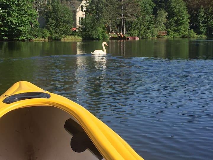 Calm Scenic Lakefront Home