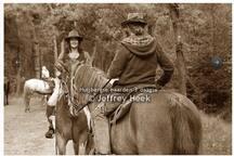 Paarden rit heide