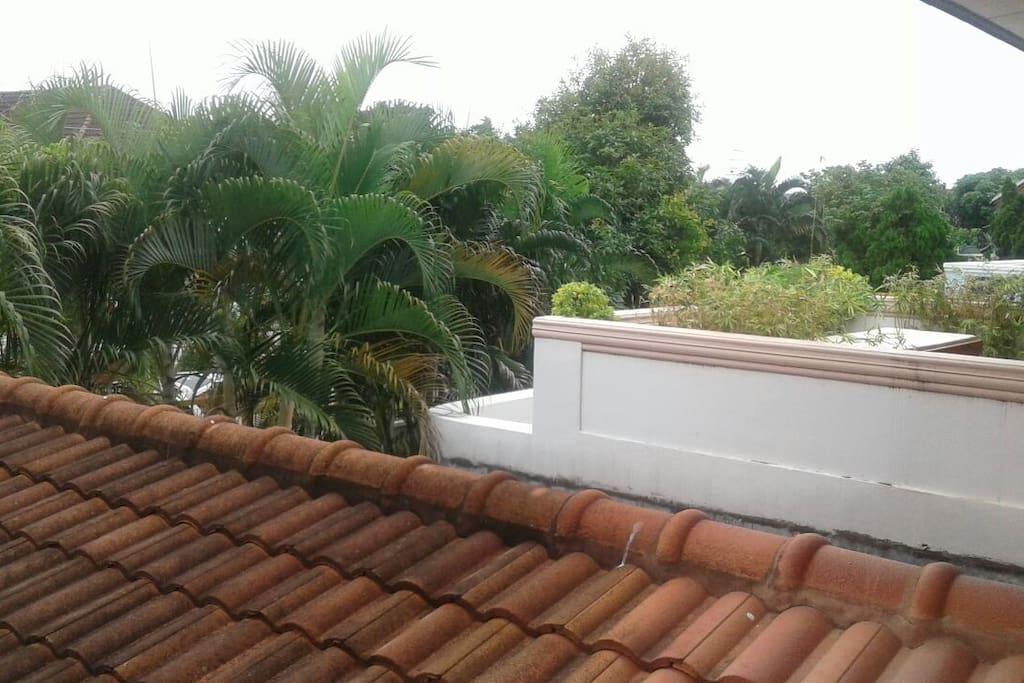 beautiful terrace view