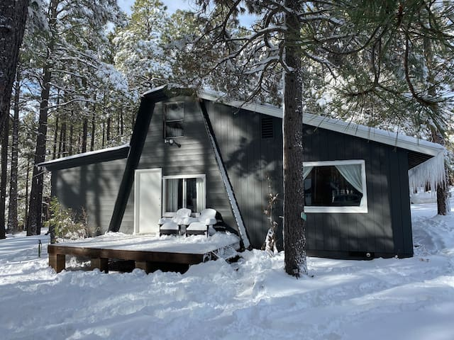 🌲Rustic Modern Cabin in Snow Covered Forest Lakes🌲