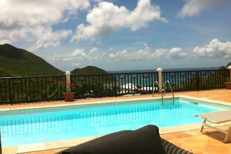 Villa à Anse Marcel avec piscine, vue mer et plage