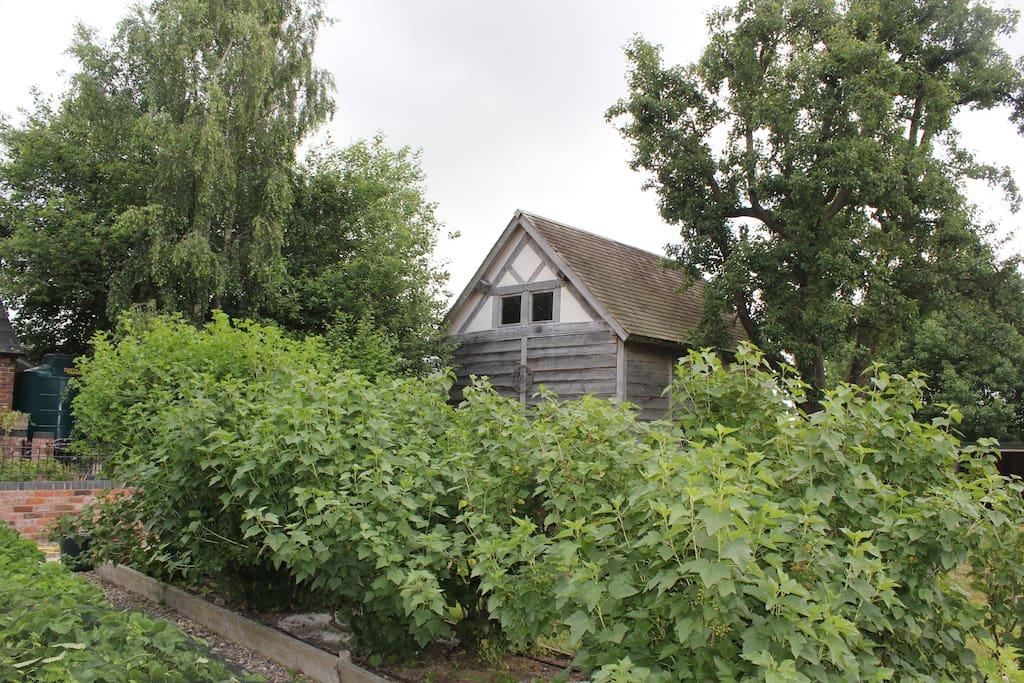 Oak horticultural barn