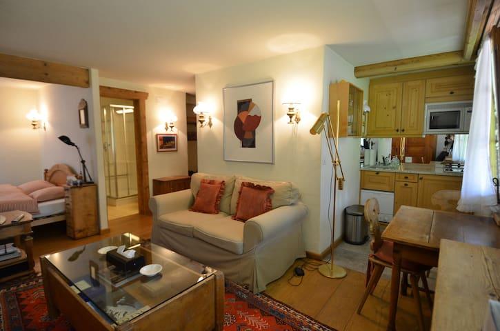 komfortables Studio in Gstaad - Saanen - Departamento
