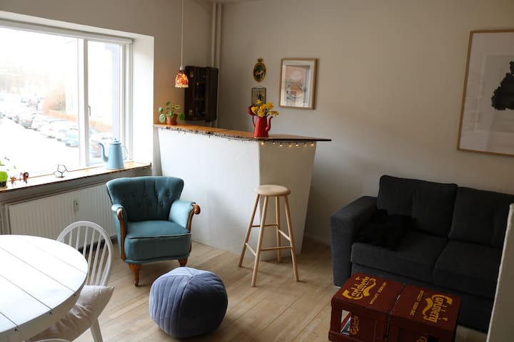 Nice and Cozy apartment in Odense C - Odense - Daire
