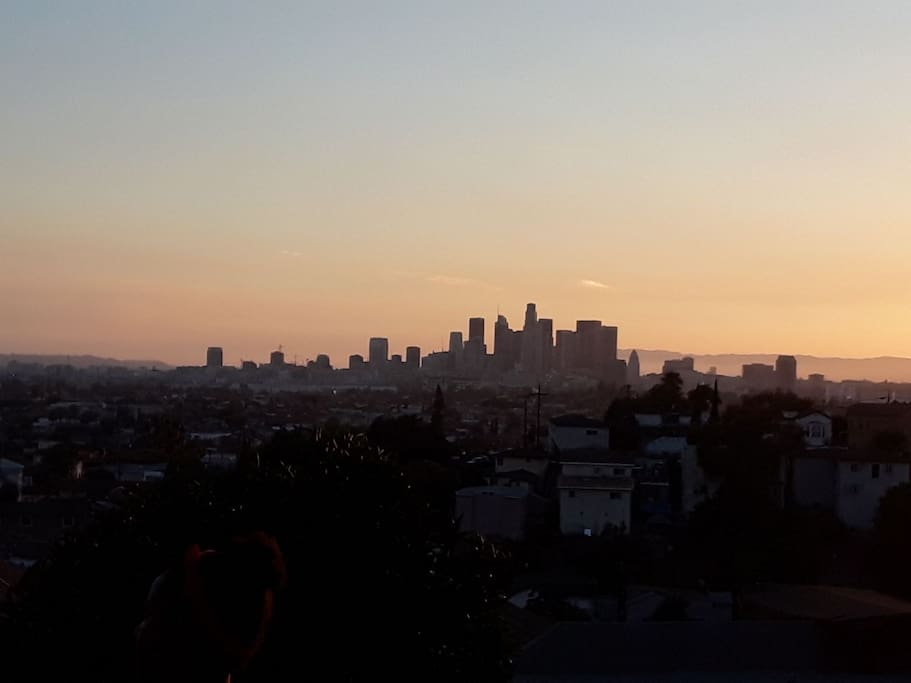 Downtown Los Angeles View