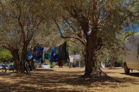 Camping Leros - Kalimnos - Tenda
