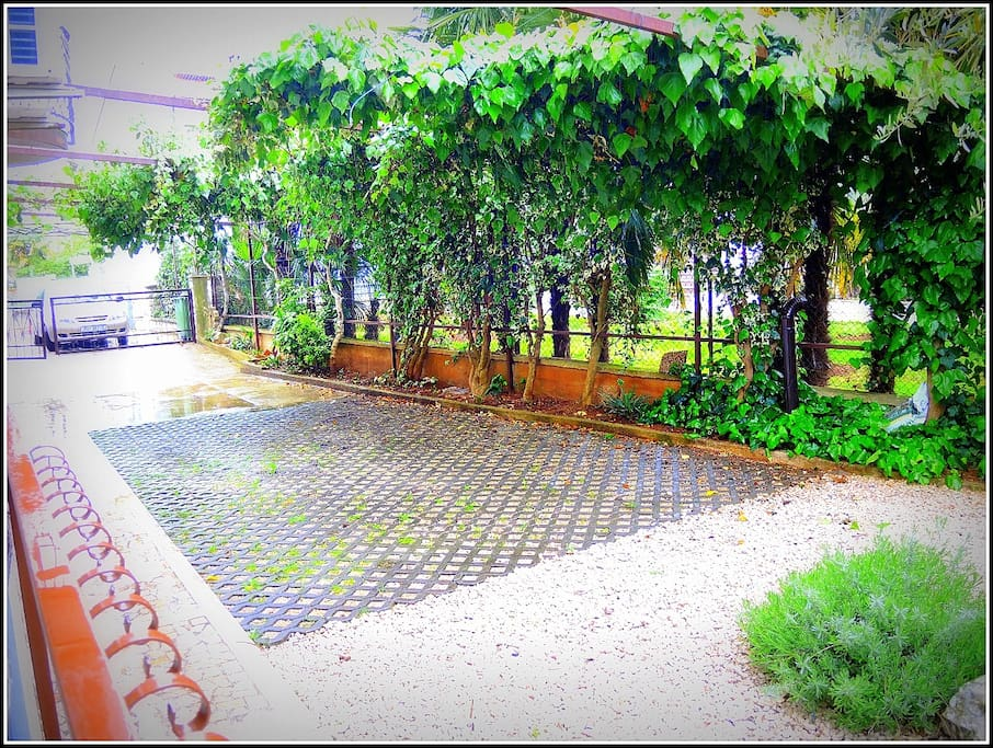 Private parking lot on premises
