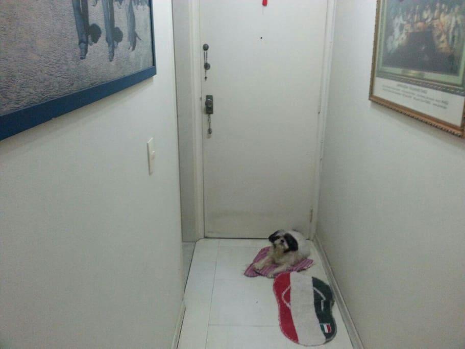 "My little dog ""Sofia"""