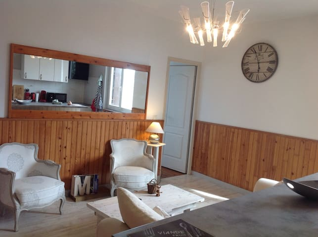 Grand Appartement MtM Centre Ville - Mont-de-Marsan - Leilighet