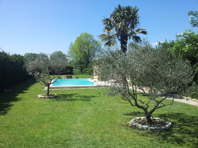 The olives trees, the pool, the sun - Sarrians - Wohnung
