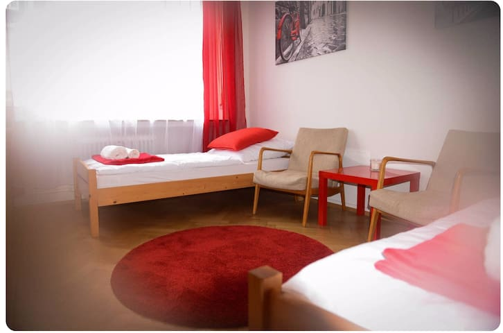 Very central cosy room in the heart of Freiburg