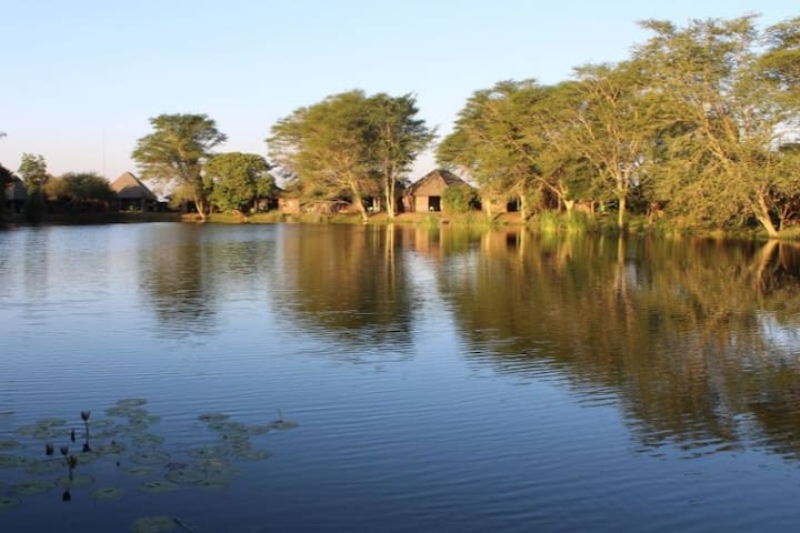African getaway: Ngwenya Lodge 6-sleeper chalet