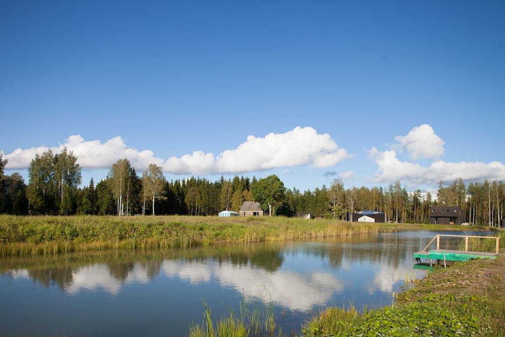 Lake and surrounding.