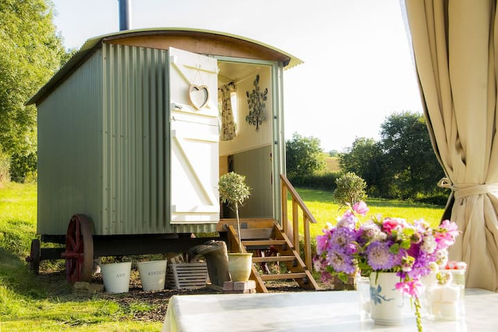 Bathsheba, Shepherd's Hut in meadow - Stockleigh Pomeroy