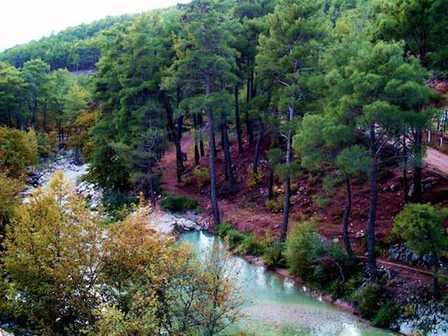 dırabız house&orman evi - Dağbağ