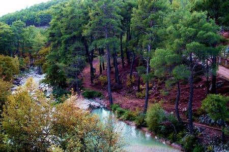 dırabız house&orman evi - Dağbağ - Chalet