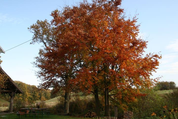 Herbstlicher Garten vor dem Ferienhaus mit Blick aufs Naturschutzgebiet