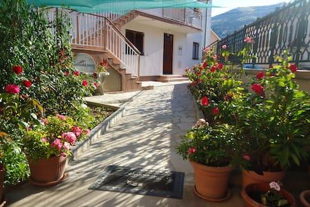 Cheap house near the center of city - Mostar - 独立屋