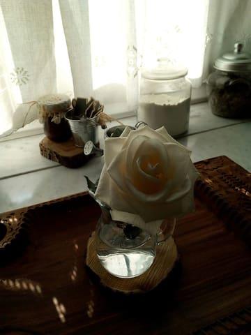 Camera cacao