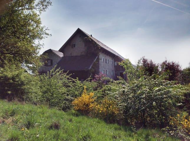 Blick von den Weiden zur Gartenseite mit überdachtem Grillplatz