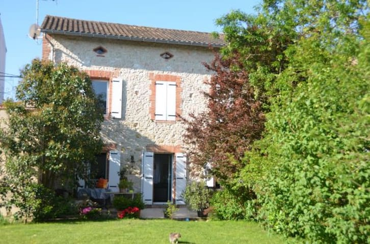 House in stone with swimming-pool - Lavaur - House