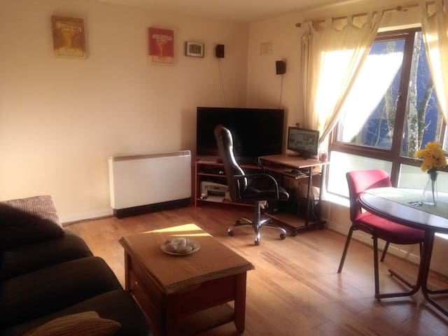 Double Bed Apartment in the Heart of Sligo - Sligo - Apartment