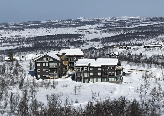 Kikut Panorama - Geilo Ski inn/out