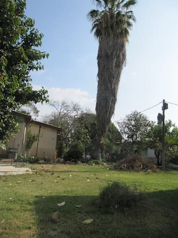 A little house on the kibbutz