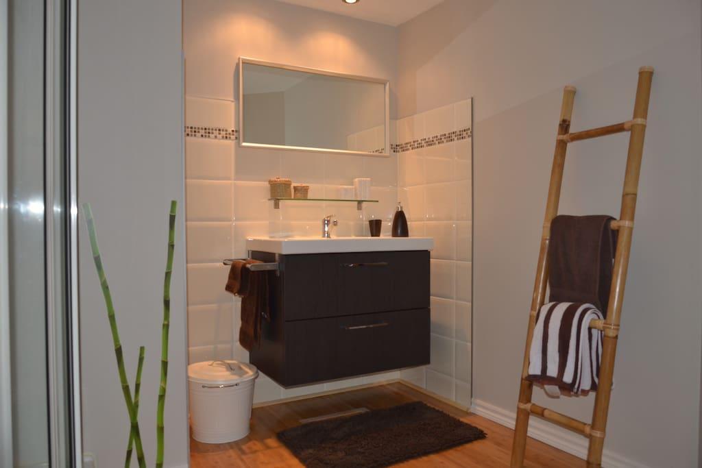 Salle de bain fonctionnelle.