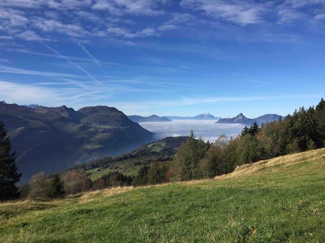 Tschalunstrasse 32, 8843 Oberiberg