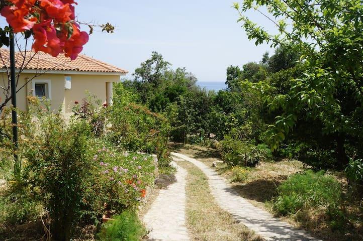 Villa Perivoli - Zakinthos - Hus