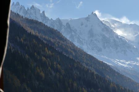 Studio Argentiere vue  Mont Blanc