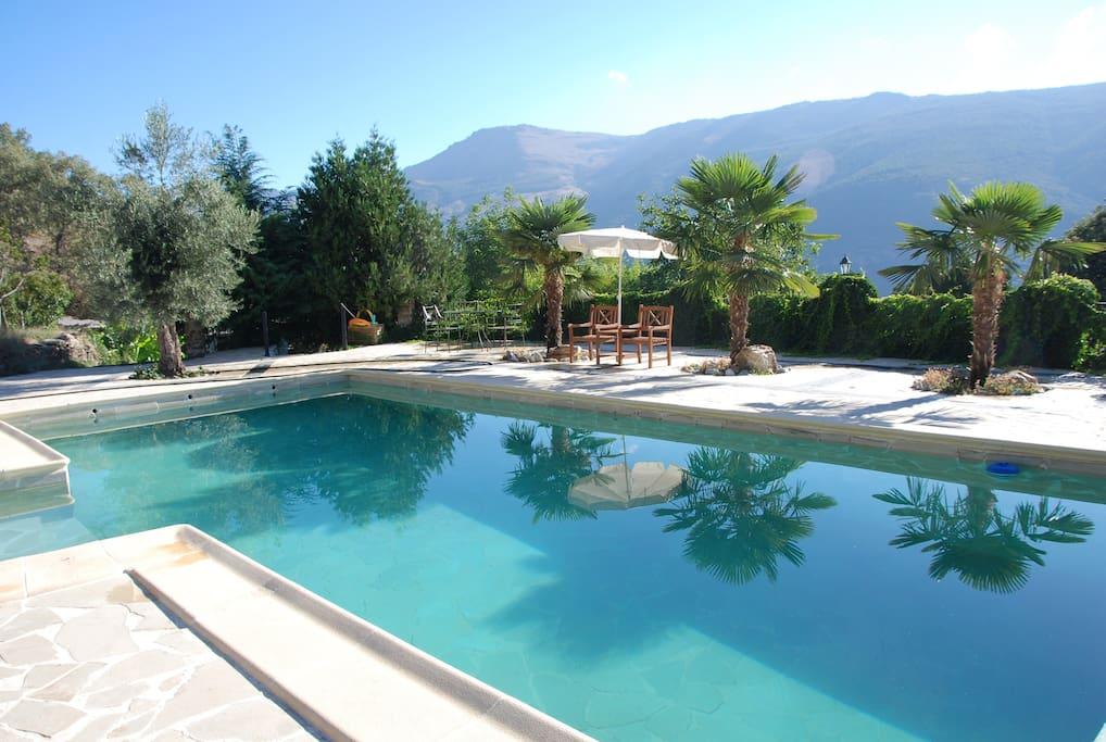 The beautiful pool at Corrtijos Rey Fini