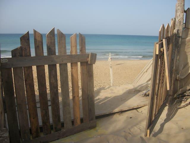 Your holiday on Carratois beach