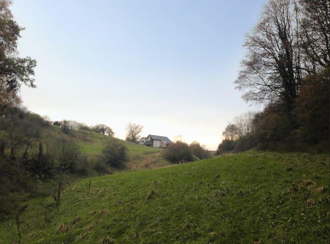 Der Hof vom Waldrand aus gesehen