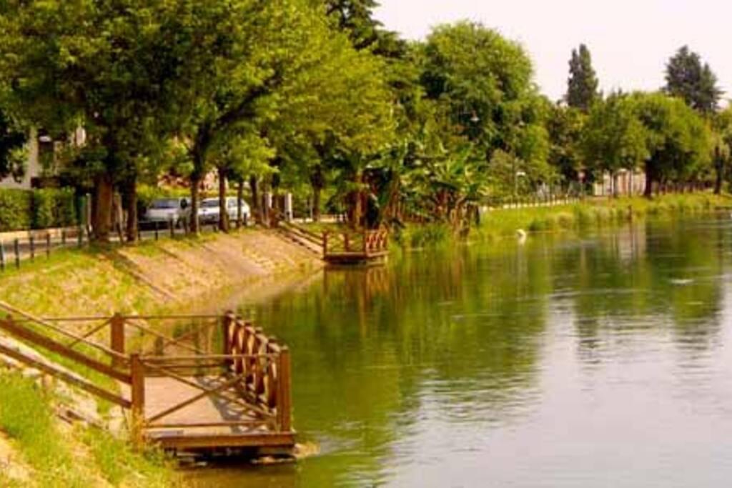 Via Alzaia. The location