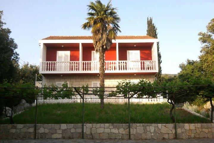 Villa for large groups - Molunat - Villa