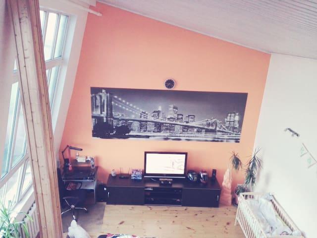 Artist workshop - Riga - Appartement