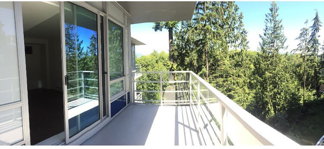 Modern 1 Bdrm in SFU  Perfect for long term!