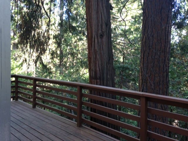 2 decks, fireplace, 3/2 in  Woods - Twain Harte - Casa