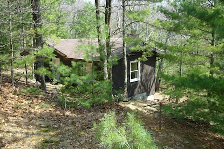Cottage in the woods-Lake MI access - Pentwater