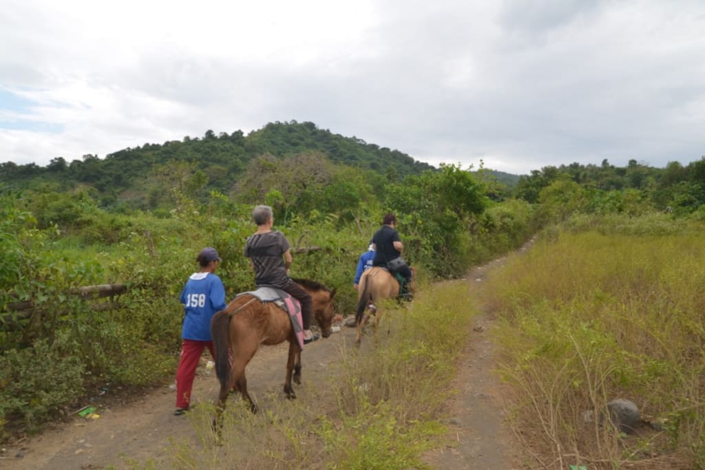 Taal Trekking with Horse
