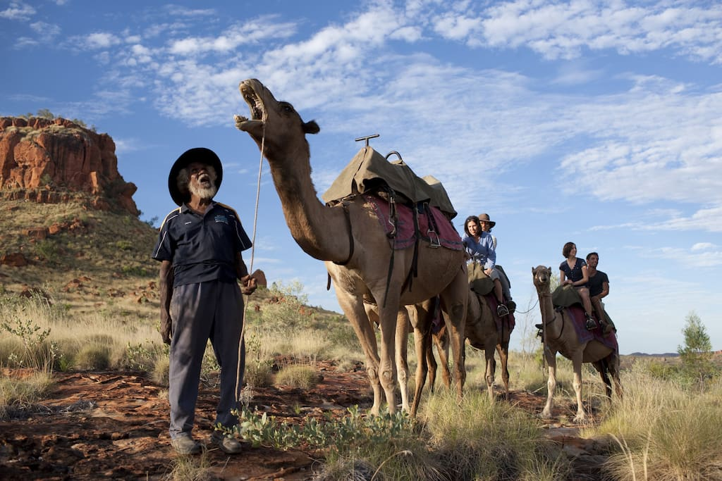 Harry Watson has a great relationship with his camels.  Hopefully you will get to meet him.