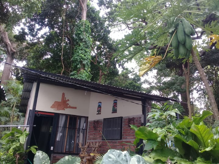 Bungalow with kitchen,fridge and wifi.