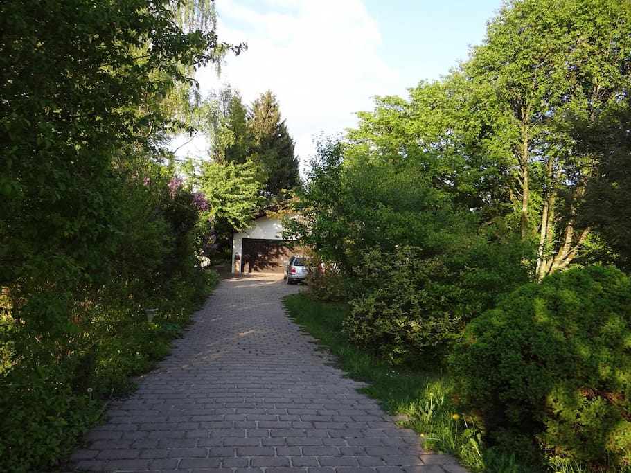 Our driveway in spring