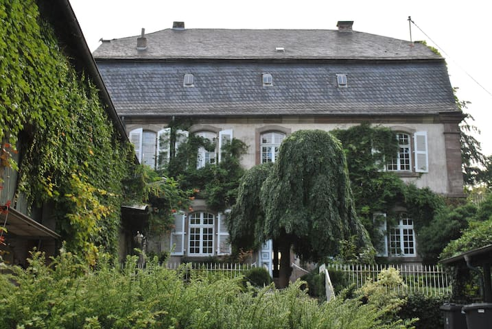 Living in an ancient castle  - Merzig - Bed & Breakfast